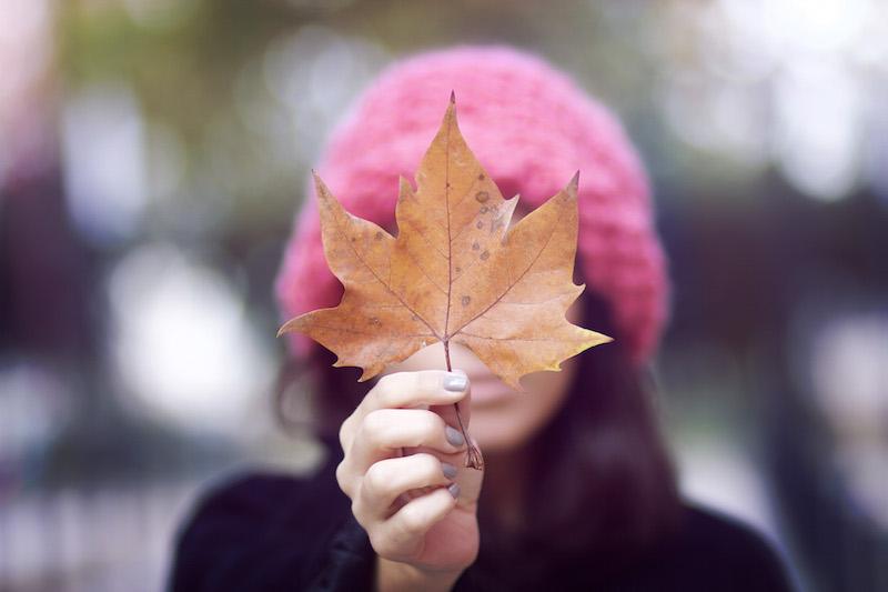 photo feuille automne