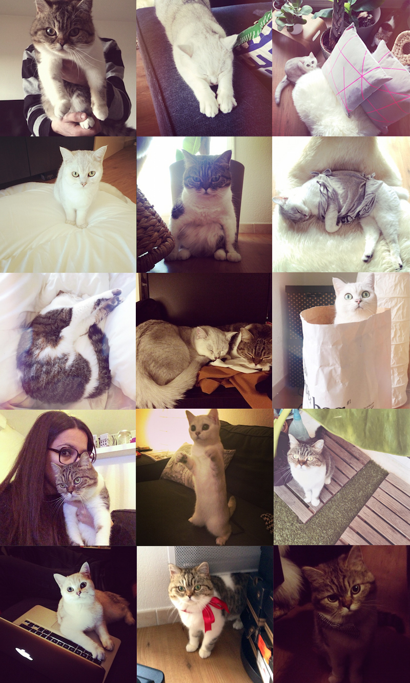 chats instagram