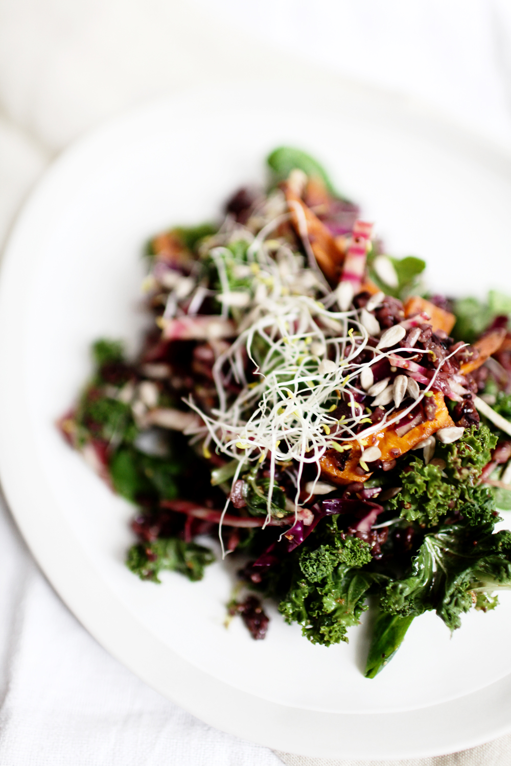 salad_kale_sweet_potato_29101601