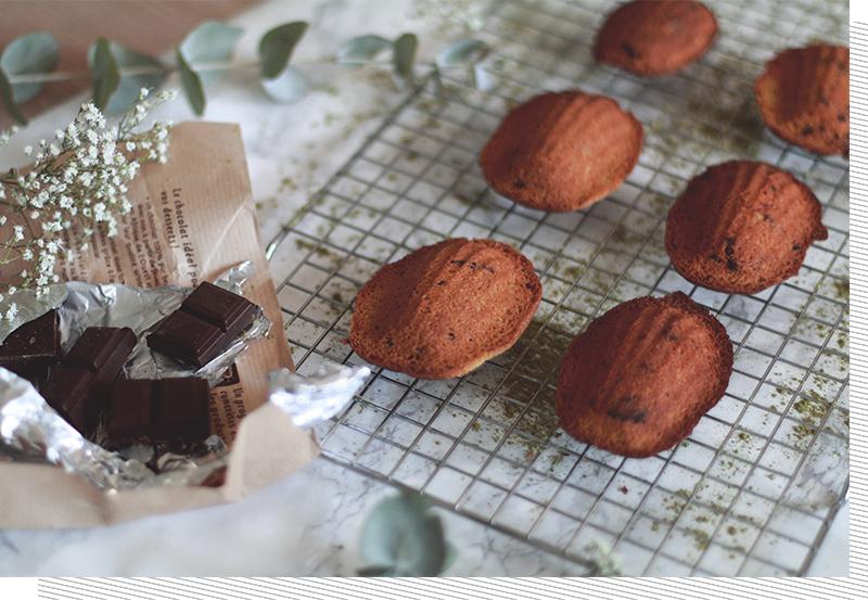 Madeleines-the-matcha-chocolat