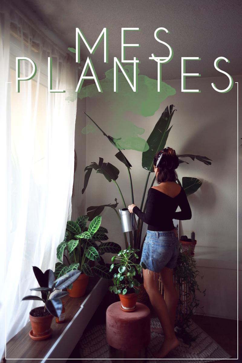 Mes Plantes